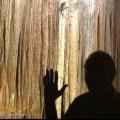 02-Blanchard-Springs-Caverns-AK-00162-120x120
